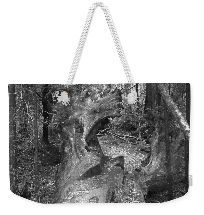 Landscape Weekender Tote Bag featuring the photograph Big Basin 2 by Karen W Meyer