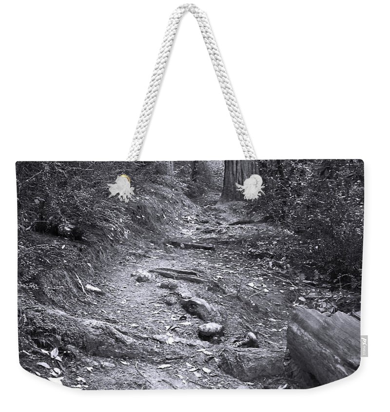 Landscape Weekender Tote Bag featuring the photograph Big Basin Redwoods Sp 1 by Karen W Meyer