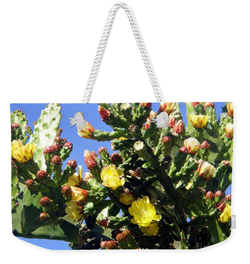 Cactus Weekender Tote Bag featuring the photograph Big Cactus, Yellow Flowers by Sofia Metal Queen
