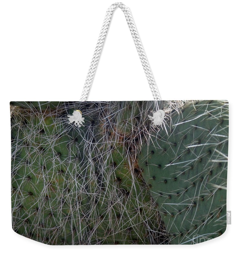 Big Cactus Weekender Tote Bag featuring the photograph Big Fluffy Cactus by Sofia Metal Queen