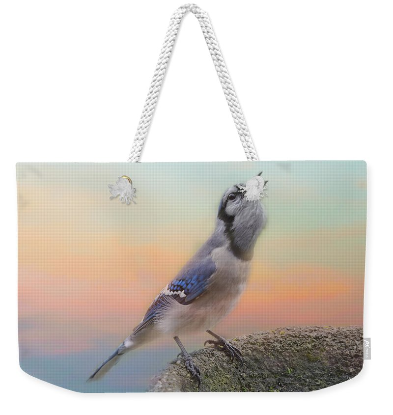 Bluejay Weekender Tote Bag featuring the photograph Big Mouthful by Sue Capuano