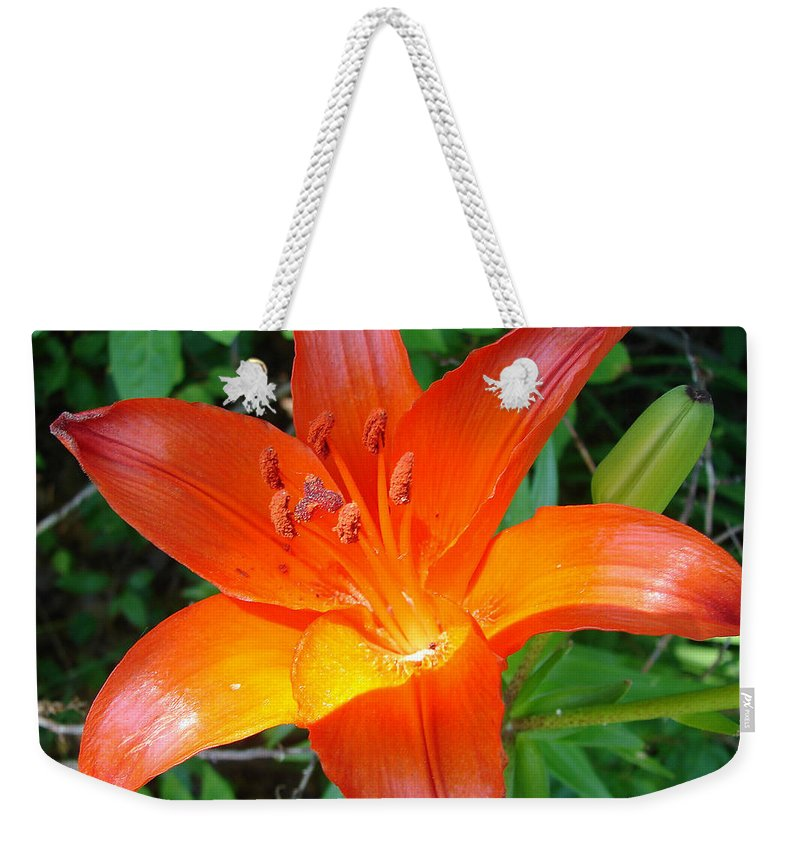 Orange Flower Yellow Weekender Tote Bag featuring the photograph Big Orange by Luciana Seymour