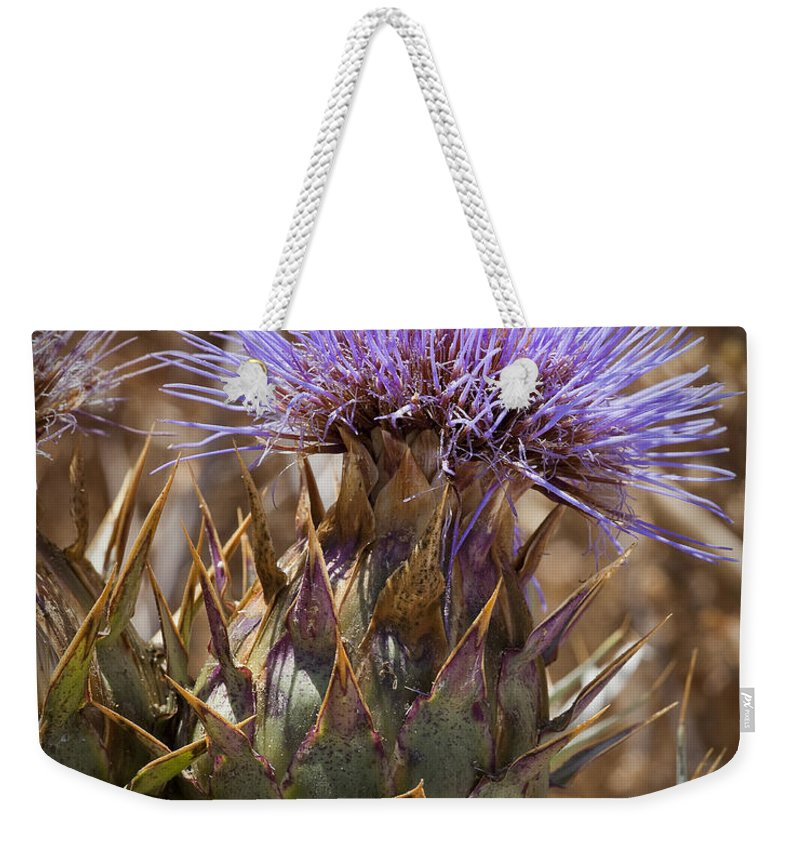 Artichoke Thistles Weekender Tote Bag featuring the photograph Big Thistle 2 by Kelley King