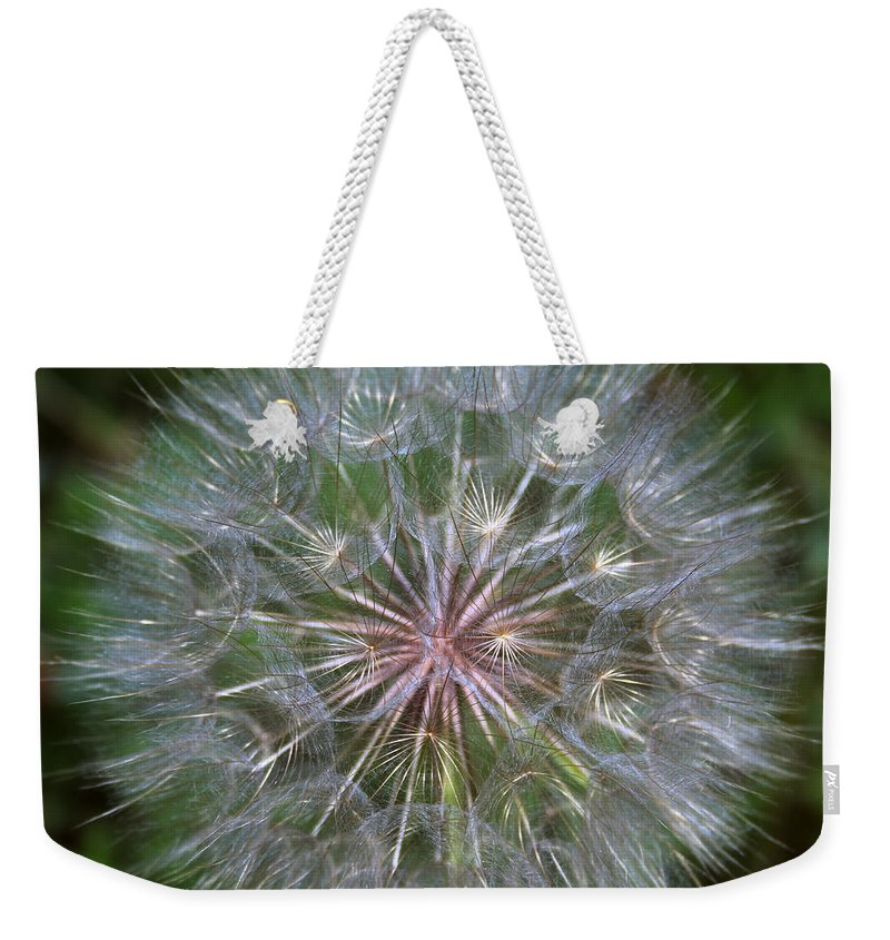 Dandelion Weekender Tote Bag featuring the photograph Big Wish by Linda Sannuti