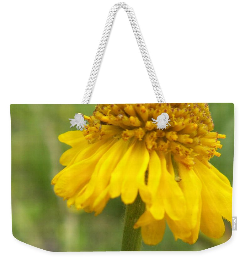 Flower Weekender Tote Bag featuring the photograph Bigelow by Amy Fose