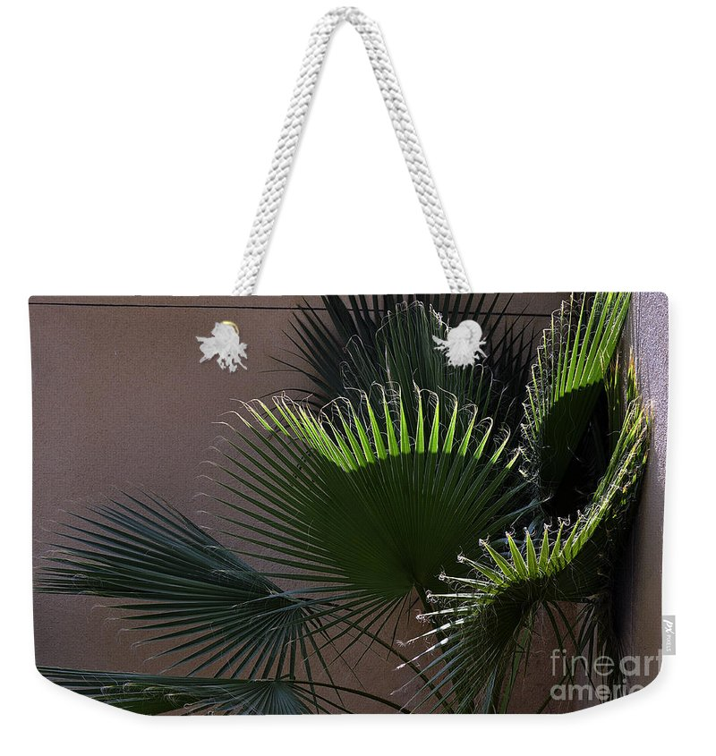 Clay Weekender Tote Bag featuring the photograph Biggest Fans by Clayton Bruster