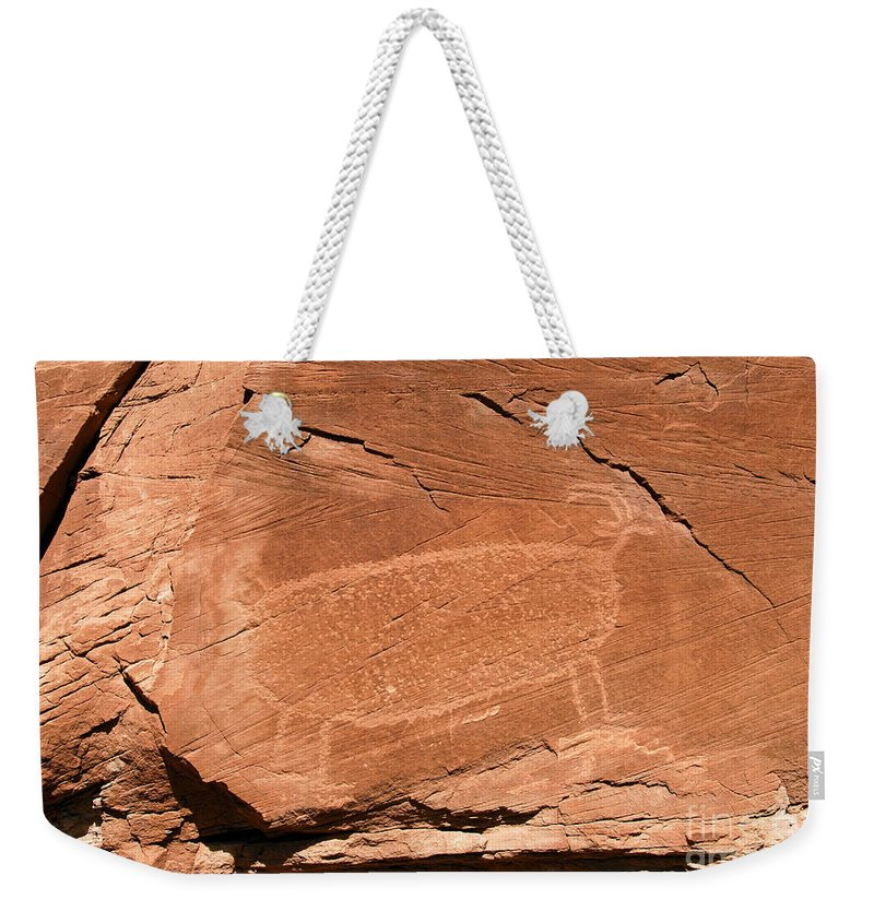 Bighorn Sheep Weekender Tote Bag featuring the photograph Bighorn by David Lee Thompson