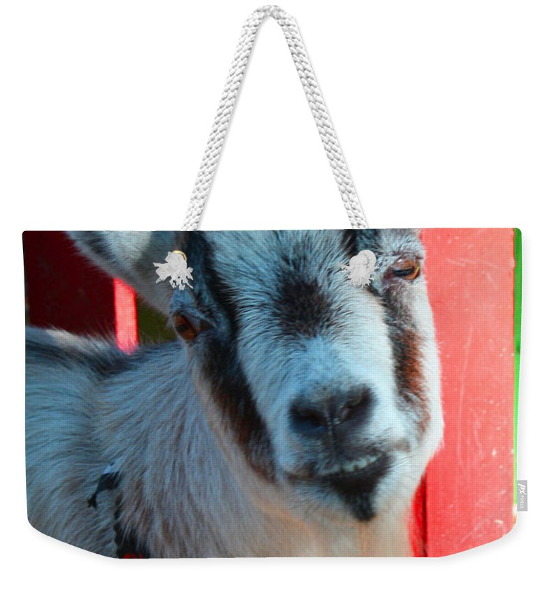 Goak Weekender Tote Bag featuring the photograph Billy by Tommy Anderson