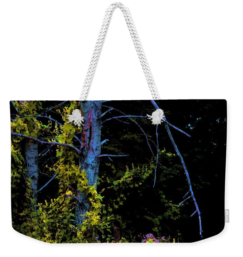 Birch Trees In Summer Weekender Tote Bag featuring the photograph Birch And Vines by Joanne Smoley