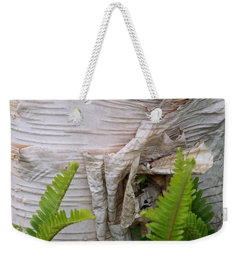 Tree Weekender Tote Bag featuring the photograph Birch Fern by Gale Cochran-Smith