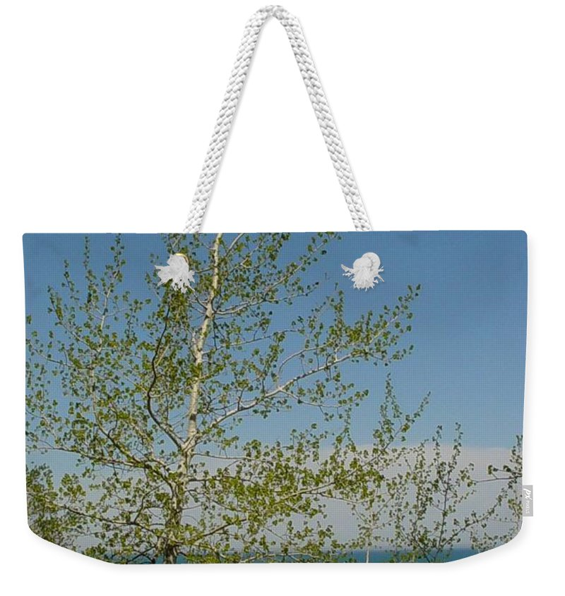 Birch Tree Weekender Tote Bag featuring the photograph Birch Tree Over Lake by Anita Burgermeister