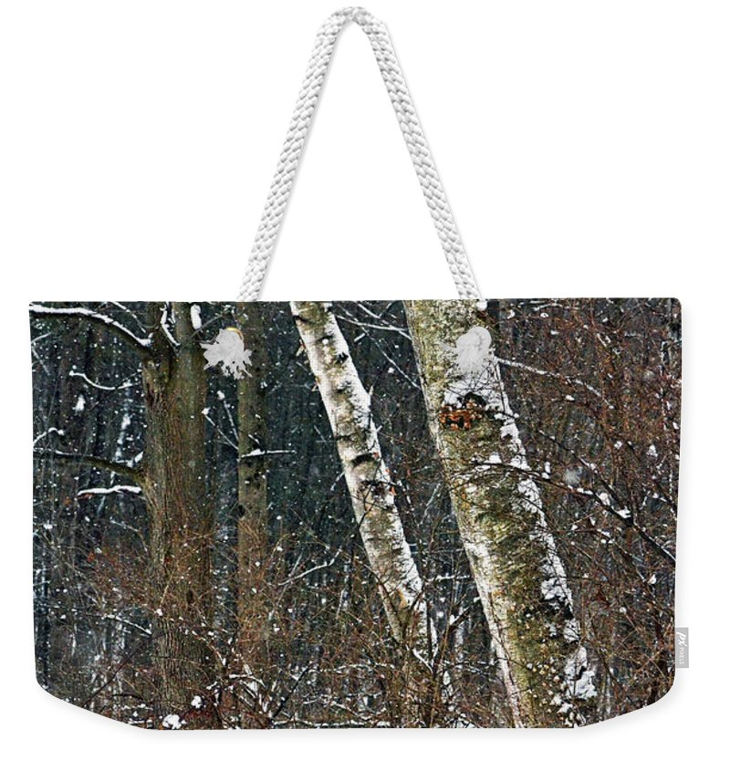 Trees Weekender Tote Bag featuring the photograph Birches During A Snowfall by Mark Schiffner
