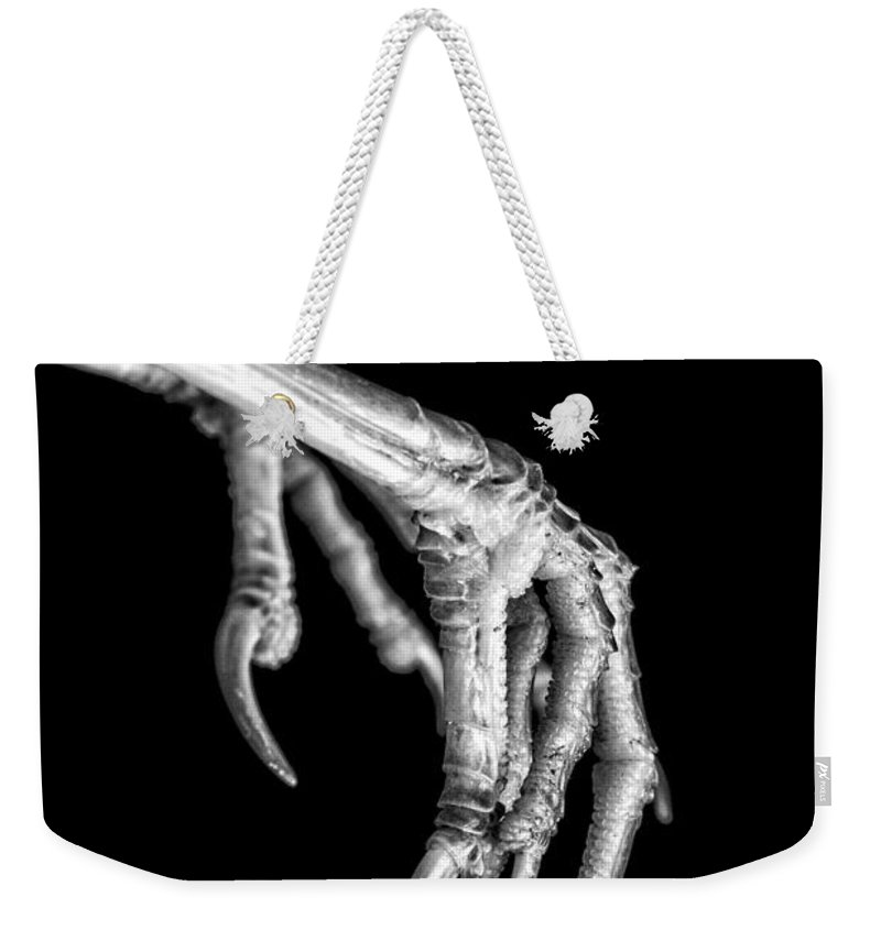 Claw Weekender Tote Bag featuring the photograph Bird Claw Black And White by Edward Fielding