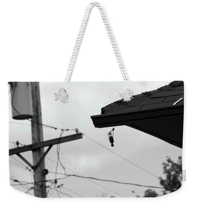 Michigan Weekender Tote Bag featuring the photograph Bird by Jordan Mayle