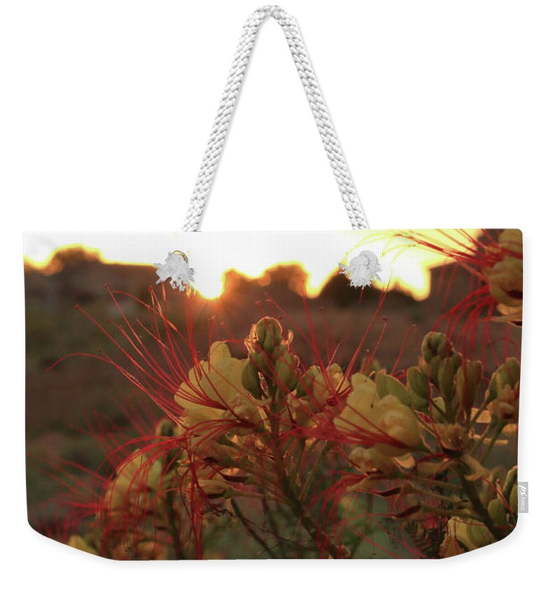 Bird Of Paradise Weekender Tote Bag featuring the photograph Bird Of Paradise by David Diaz