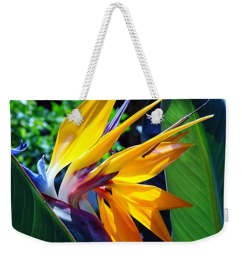 Flowers Weekender Tote Bag featuring the photograph Bird Of Paradise by Susanne Van Hulst