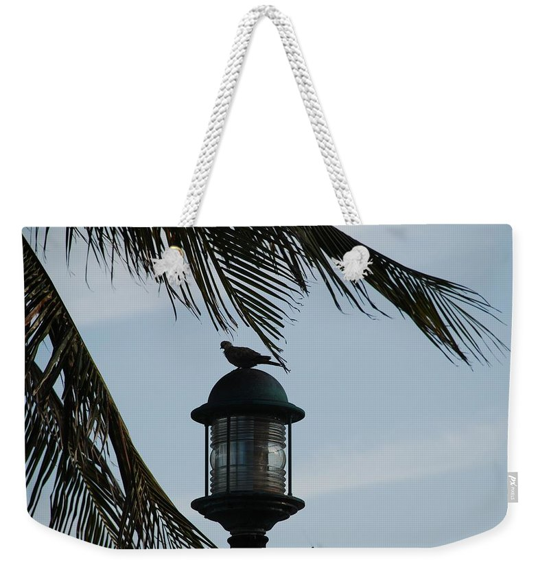 Lamp Post Weekender Tote Bag featuring the photograph Bird On A Light by Rob Hans