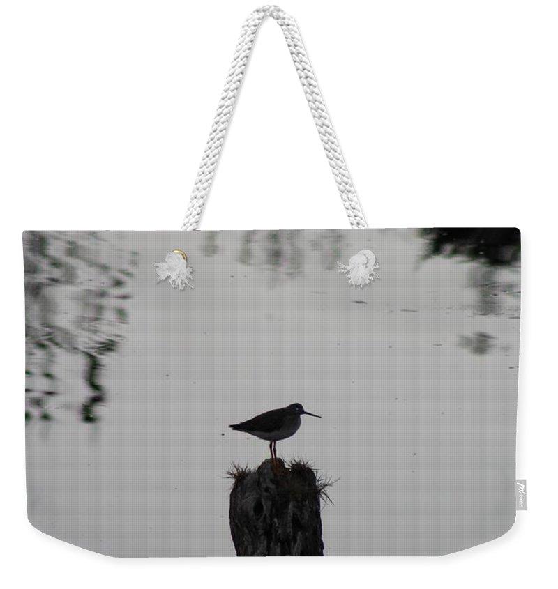 Bird Weekender Tote Bag featuring the photograph Bird On A Stump by Modern Art
