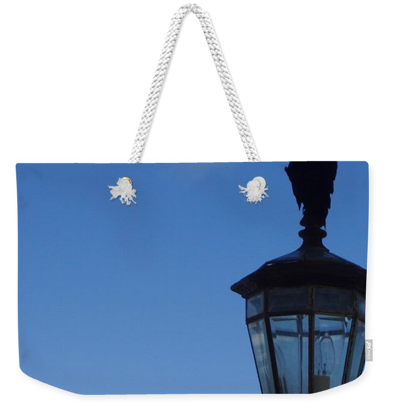 Bird Weekender Tote Bag featuring the photograph Bird On Lamplight by Deborah Crew-Johnson