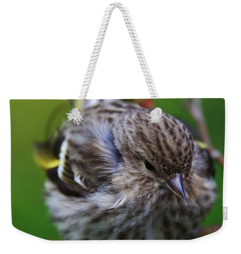 Passerine Weekender Tote Bag featuring the photograph Bird Perch by Stacie Gary