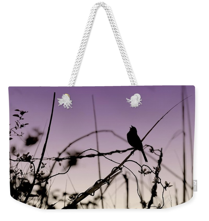 Silhouette Weekender Tote Bag featuring the photograph Bird Sings by Angie Tirado
