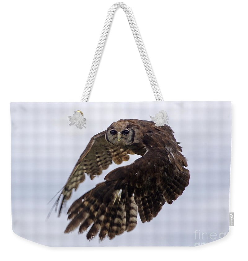 Birds Weekender Tote Bag featuring the photograph Birds 48 by Ben Yassa