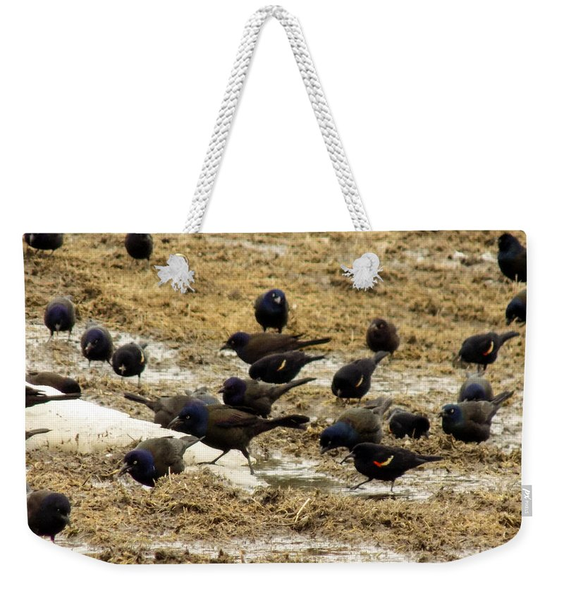 Birds Weekender Tote Bag featuring the photograph Birds In The Mud by William Tasker
