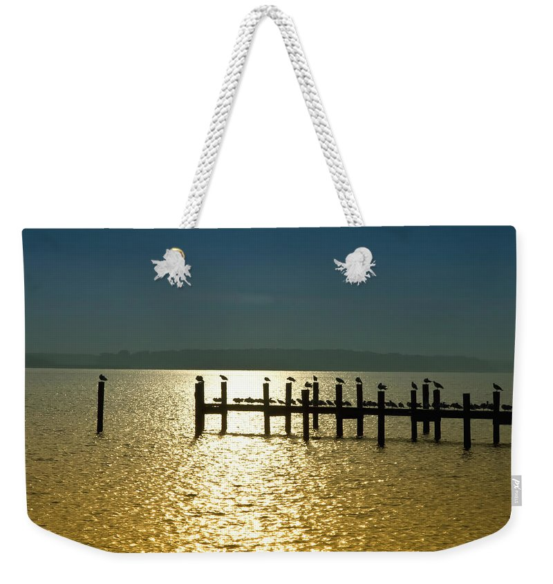 Birds Weekender Tote Bag featuring the photograph Birds Of A Feather Flock Together by Bill Cannon