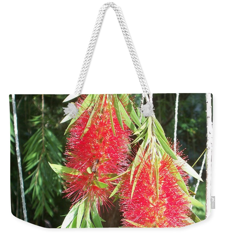 Florida Weekender Tote Bag featuring the photograph Bittersweet Bloom II by Chris Andruskiewicz