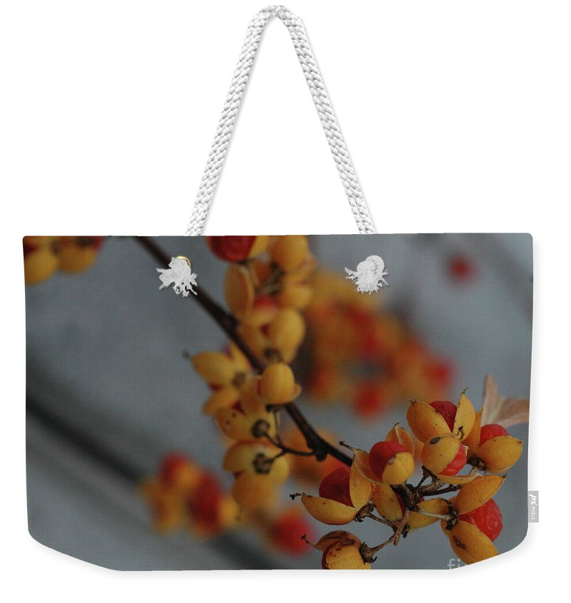 Fall Weekender Tote Bag featuring the photograph Bittersweet by Kathy Carlson