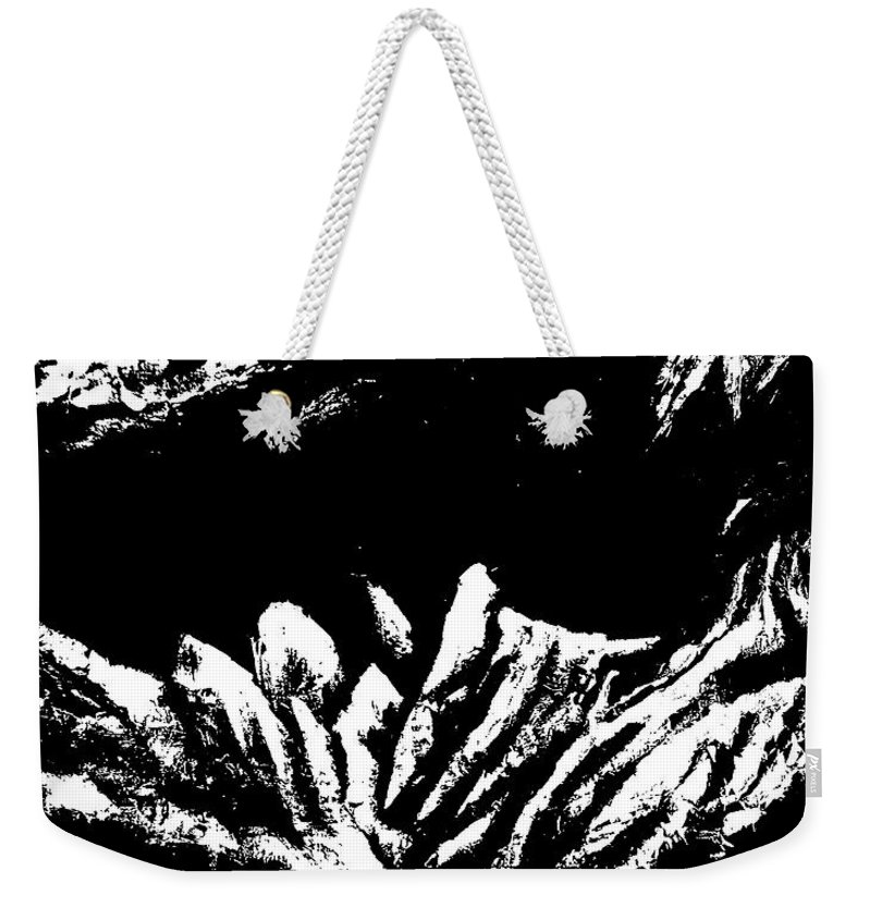 Weekender Tote Bag featuring the painting Black and White 2 by Ara Elena