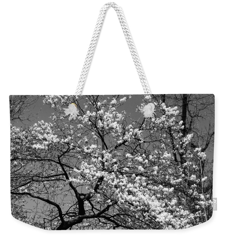 Tree Weekender Tote Bag featuring the photograph Black And White Blossoms by Phill Doherty