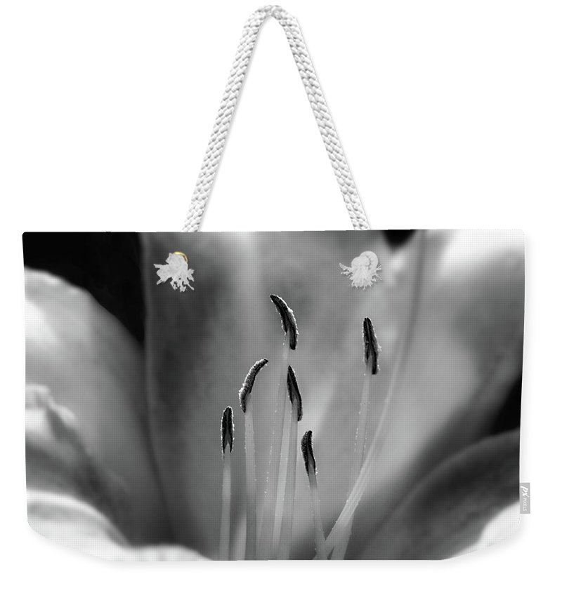 Day Lily Weekender Tote Bag featuring the photograph Too Short by Chris Fleming