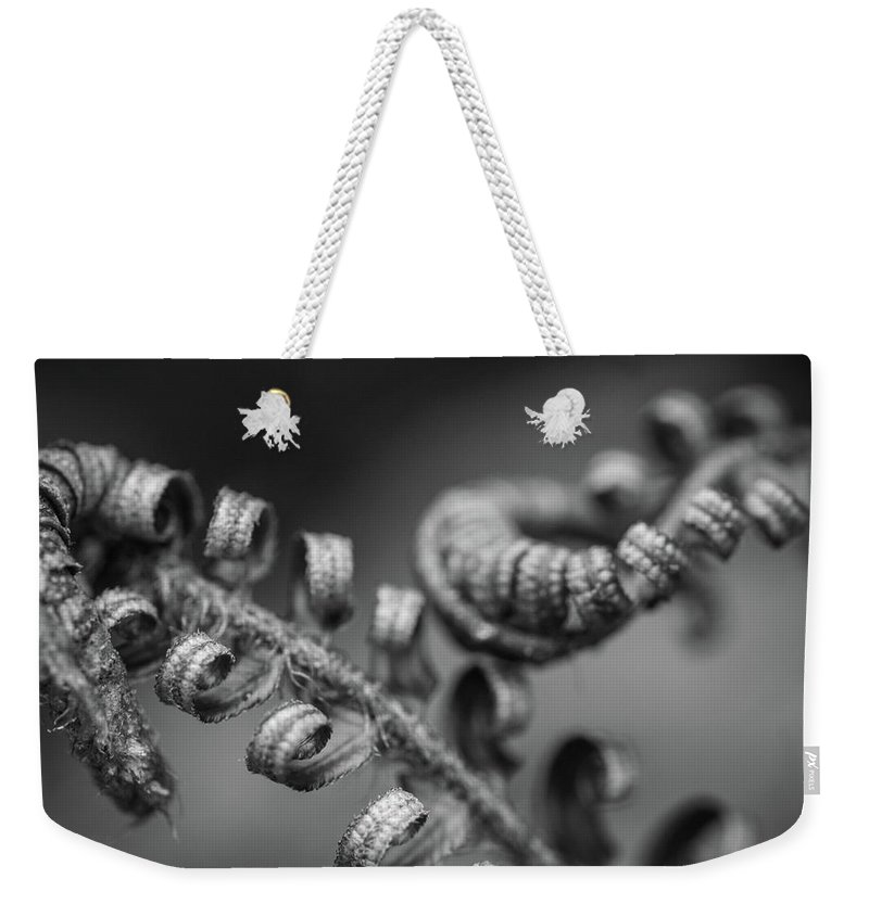 Michele James Photography Weekender Tote Bag featuring the photograph Black And White Ferns by Michele James