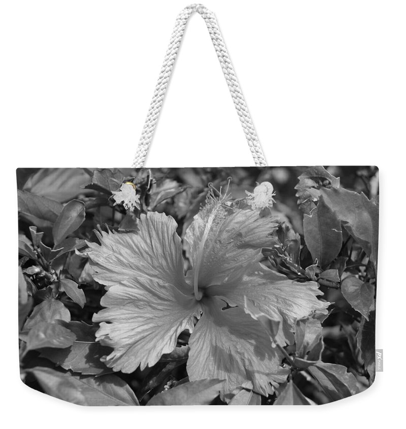 Black And White Weekender Tote Bag featuring the photograph Black And White by Rob Hans