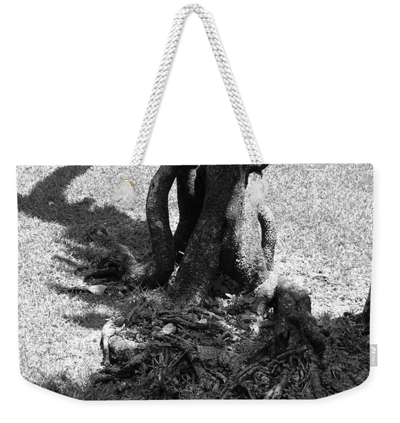 Black And White Weekender Tote Bag featuring the photograph Black And White Roots by Rob Hans