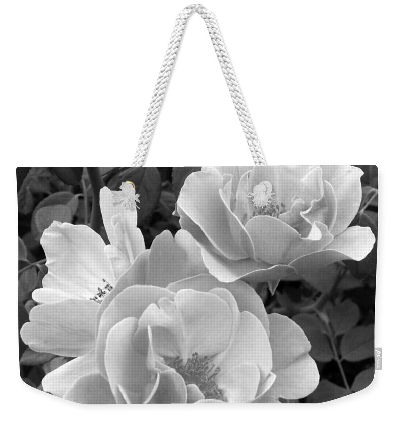 Rose Weekender Tote Bag featuring the photograph Black And White Roses 1 by Amy Fose
