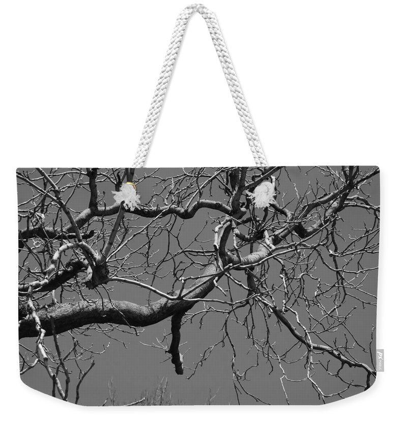 Sky Weekender Tote Bag featuring the photograph Black And White Tree Branch by Rob Hans