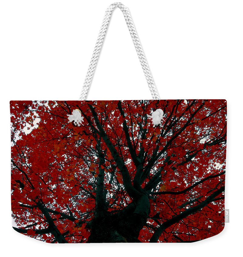 Red Tree Weekender Tote Bag featuring the painting Black Bark Red Tree by David Lee Thompson
