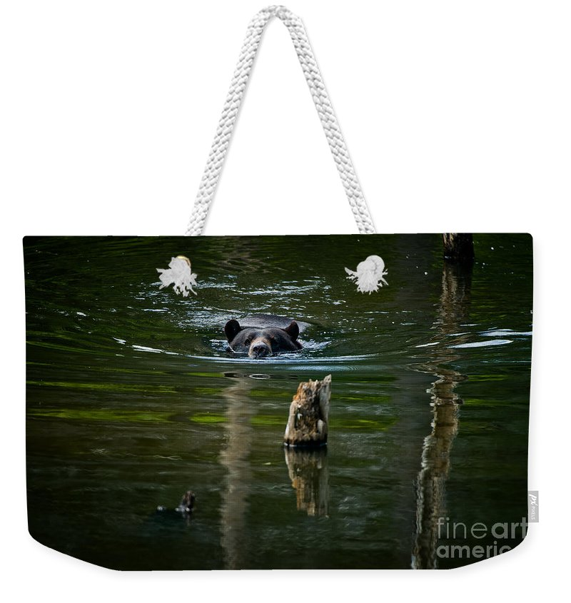 Black Bear Weekender Tote Bag featuring the photograph Black Bear Pictures 104 by World Wildlife Photography