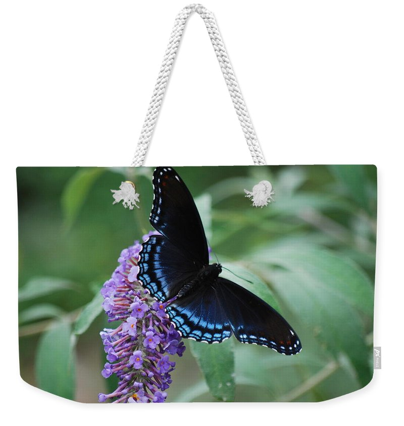 Butterfly Weekender Tote Bag featuring the photograph Black Beauty by Lori Tambakis