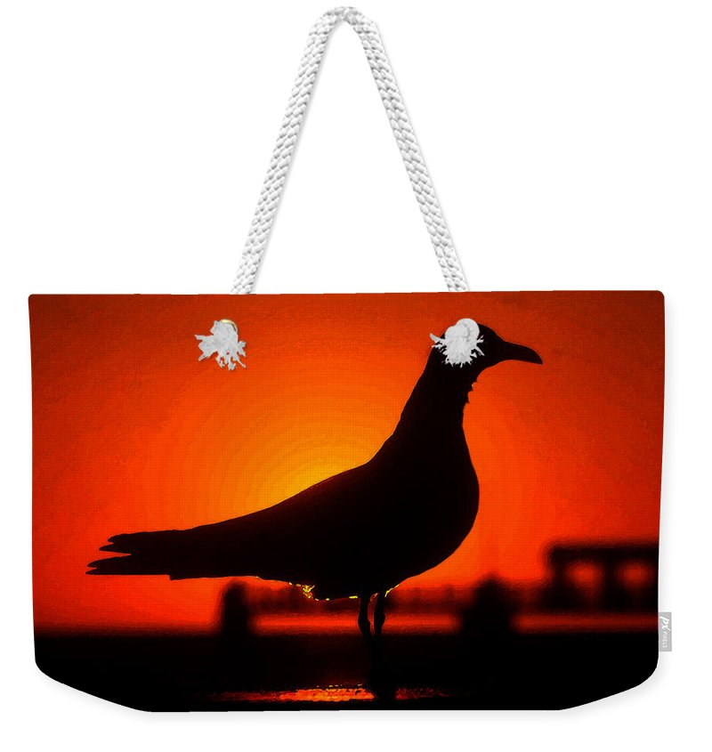 Bird Weekender Tote Bag featuring the painting Black Bird Red Sky by David Lee Thompson