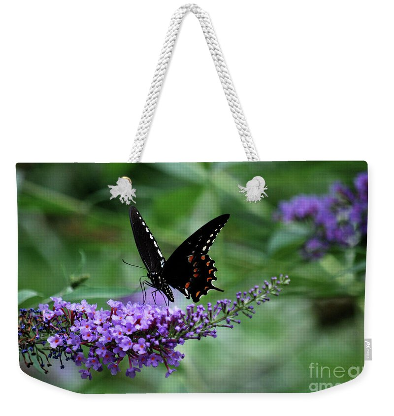 Butterfly Weekender Tote Bag featuring the photograph Black Butter by Lori Tambakis
