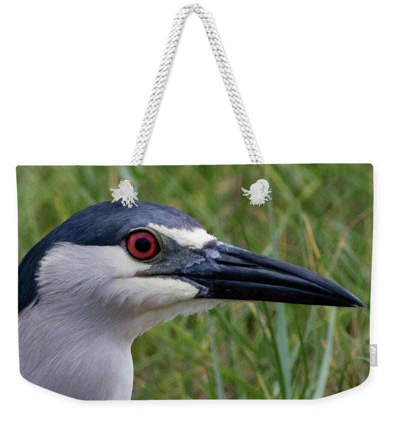 Bird Weekender Tote Bag featuring the photograph Black-crowned Night-heron by Paul Miyasaki