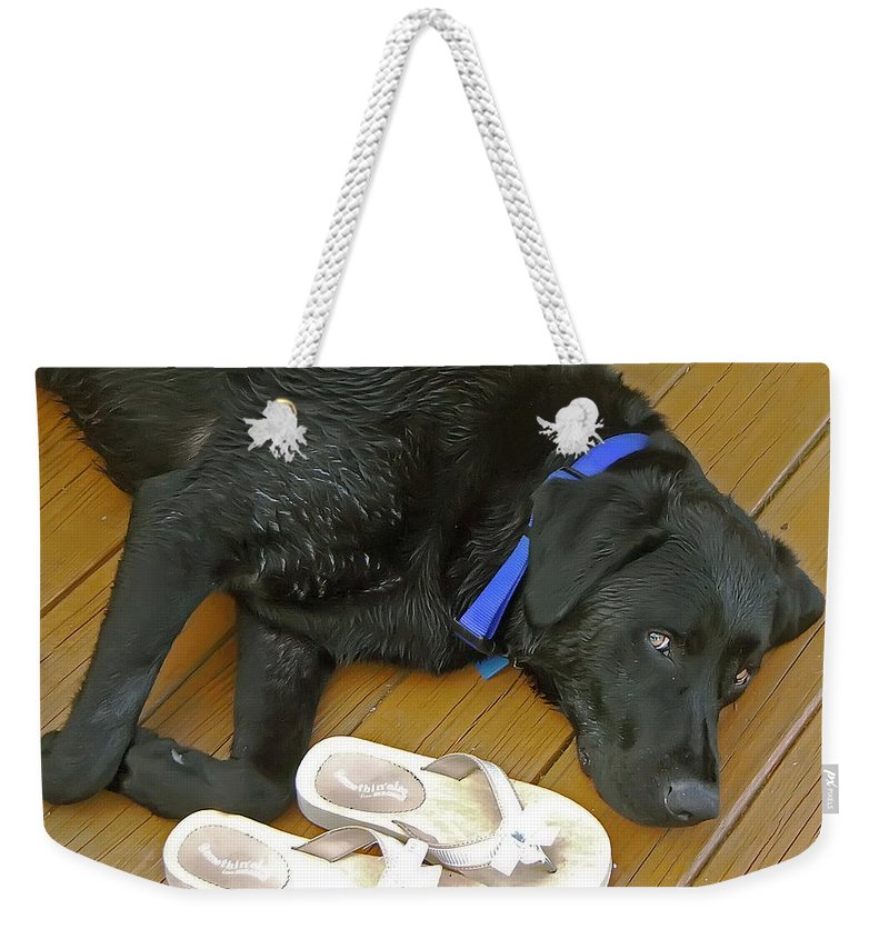 2d Weekender Tote Bag featuring the photograph Black Lab Resting by Brian Wallace