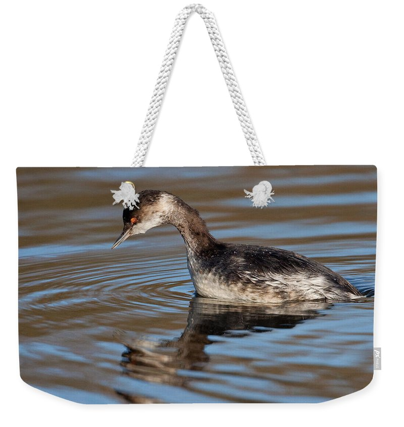 Black-necked Grebe Weekender Tote Bag featuring the photograph Black-necked Grebe About To Dive by Bob Kemp