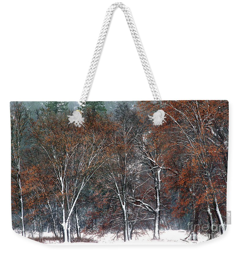 Black Oaks Weekender Tote Bag featuring the photograph Black Oaks In Snowstorm Yosemite National Park by Dave Welling