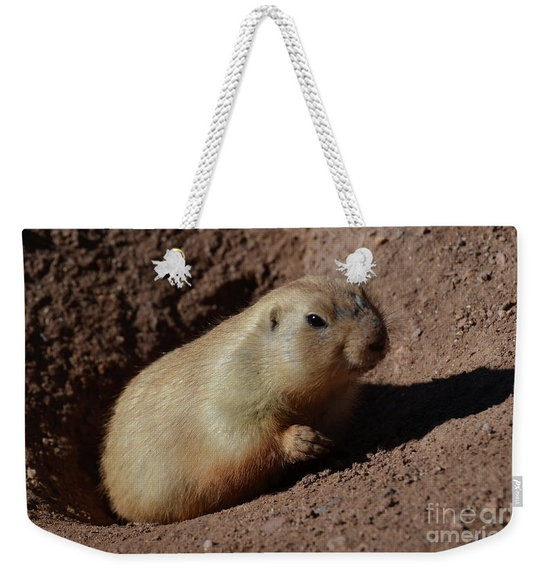 Prairie-dog Weekender Tote Bag featuring the photograph Black Tailed Prairie Dog Climbing Out Of A Hole by DejaVu Designs