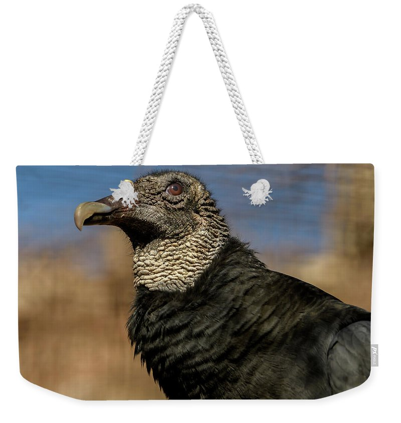 Black Vulture Weekender Tote Bag featuring the photograph Black Vulture 1 by David Pine