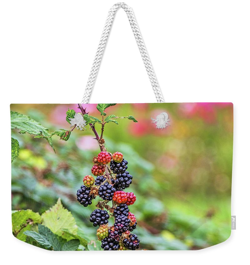 Blackberry Weekender Tote Bag featuring the photograph Blackberry. by Angela Aird